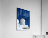 _TEL4061  Acrylic Print