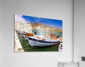 _TEL3860  Acrylic Print