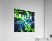 Neurospiral  Acrylic Print