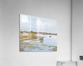 Unnamed_25x30_2010  Acrylic Print