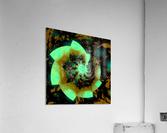Digital_Vegetation  Acrylic Print