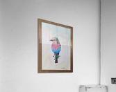 Robin_DKS  Impression acrylique