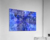 0653D292 D8E5 4E62 9DFC E97182C71A22  Acrylic Print