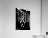 Nude 20  Acrylic Print