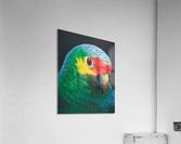 Sam  Acrylic Print