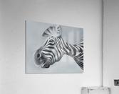 whats up  Acrylic Print
