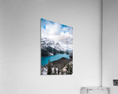 Wintry Peyto Lake  Acrylic Print