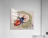 stag beetle  Acrylic Print