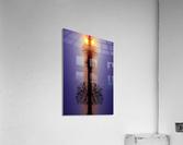 Cloudes 88  Acrylic Print