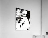 Black & White Form Texture Art D3200 1267  Acrylic Print