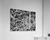 Black & White Nature  Acrylic Print