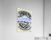 Fish_places  Acrylic Print