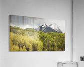 Kebler Pass   Acrylic Print