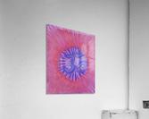 Om pink purple spring 2020  Acrylic Print