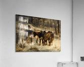 Resting horses  Acrylic Print