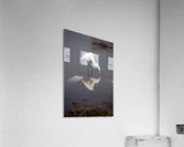 The Kiss White Egret  Acrylic Print
