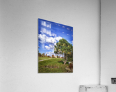 Tree and blue sky with clouds  Acrylic Print