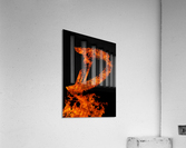 Burning on Fire Letter D  Acrylic Print