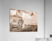 Le temps des foins  Acrylic Print