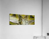 Yellow Neon Lights   Acrylic Print