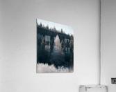 Arbre de dentelle  Impression acrylique