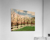 Trees In Bloom  Acrylic Print