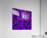 Fluttering purple  Impression acrylique