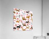 Corgis corgi pattern  Acrylic Print