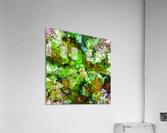 Green scene  Impression acrylique