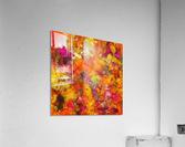Orange pop  Acrylic Print