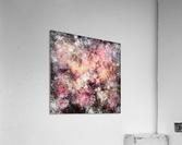Pink stone  Acrylic Print