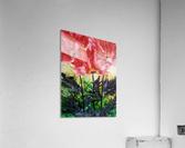 Poppies Galore  Acrylic Print