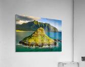 Mokolii   Acrylic Print