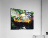Floating Botanicals  Acrylic Print