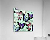 Seamless Butterflies Pattern   Acrylic Print