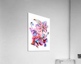 Himalaya Hot Fushia Poppies  Acrylic Print