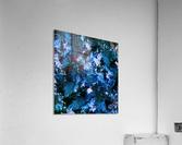 Smouldering blue  Acrylic Print