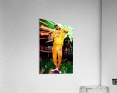 17  Acrylic Print
