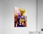 455  Acrylic Print