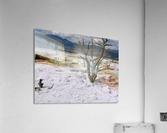 Mammoth Hot Springs Yellowstone National Park  Acrylic Print