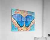 Emergence II  Acrylic Print