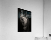 Dos  Acrylic Print