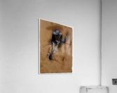 Jockey forward flexed standing in the saddle by Degas  Acrylic Print