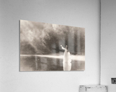 Lady by the lake  Acrylic Print