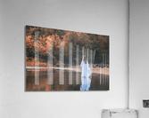 La dame du lac 2  Acrylic Print