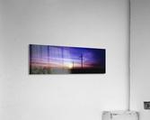Velvet Flight  Acrylic Print