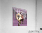Halfling Warrior  Acrylic Print