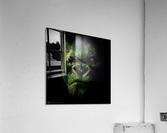 WATERMELOKONG  Acrylic Print