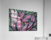 Mazeri   Acrylic Print