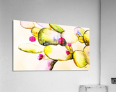 water color cactus flower  Acrylic Print